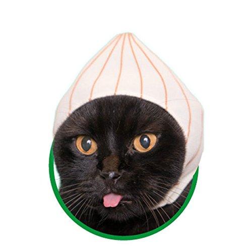 Kawaii Kawaii Cats Costume, Vegetable Hat for Cats Neko Yasai-chan (Onion) -