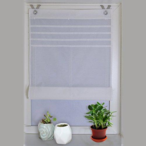 Raffrollo Ösenrollo Kessy Biese transparent Voile Rollos 1er-Pack B*H 60*140cm Weiß