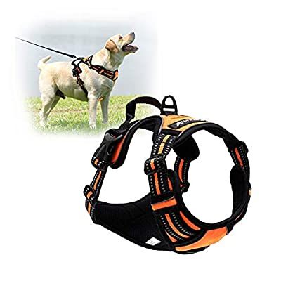 TAIL UP Dog Harness - No-Pull Adjustable Reflective Vest Easy Step-in Outdoor Harness for Small Medium Large Dog - Walking Hiking and Training by TAILUP