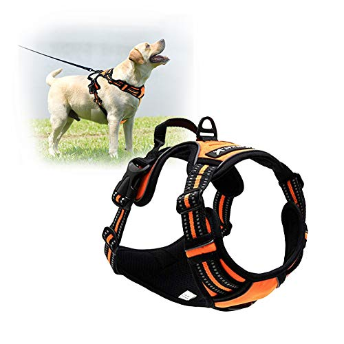 Dog Harness by Tailup - Adjustable No-Pull with Mesh Vest, Easy Step-in Adjustable Mesh Harness for Small Medium Large Dog - Walking Hiking and Training Small Orange by TAIL UP