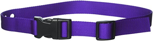 Grain Valley 1'' Replacement Strap, Color: Purple. Sold Per Each. Fits Most PetSafe Bark Collars and Many Containment Collars. (No-Bark Collars / Accessories) by Grain Valley