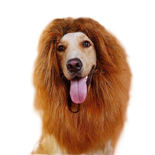 The Lion King Mane Dog Costume - Lion Wig with Tail for Medium to Big Dog - Great Fun Cosplay Costumes (Brown) (Dog Halloween Costume Beauty And The Beast)