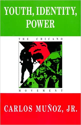 Book Youth, Identity, Power: The Chicano Movement (Haymarket Series on North American Politics and Culture)