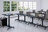 ReFocus Raw Freestanding Acoustic Desk Divider