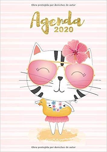 Agenda 2020: Tema Gatos Playa tropical Agenda Mensual y ...