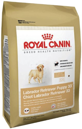 ROYAL-CANIN-BREED-HEALTH-NUTRITION-Labrador-Retriever-Puppy-dry-dog-food-30-Pound