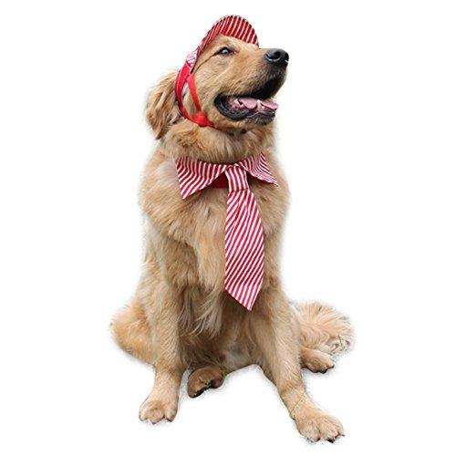 Striped Dog Tie - 1