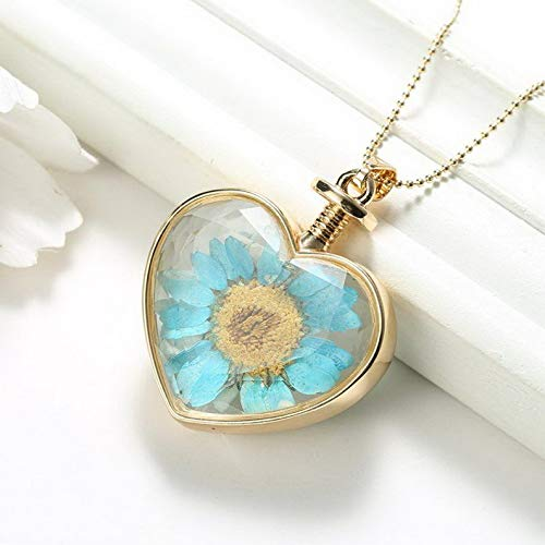 Kaputar Natural Clover Dried Flower Gold Heart Glass Locket Pendant Necklace Mom Jewelry | Model NCKLCS - 18513 |