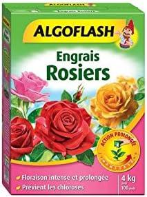 Abonos rosales acción prolongada 1 kg: Amazon.es: Jardín