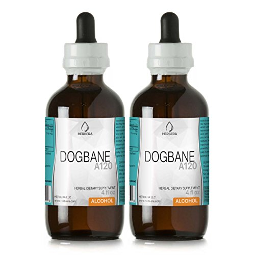 Dogbane A120 (2pcs) Alcohol Herbal Extract Tincture, Super-Concentrated Wildcrafted Luo Bu Ma (Dogbane Leaf, Herba Apocyni Veneti) Dried Leaf (2x4 fl oz) (Leaf Dogbane)