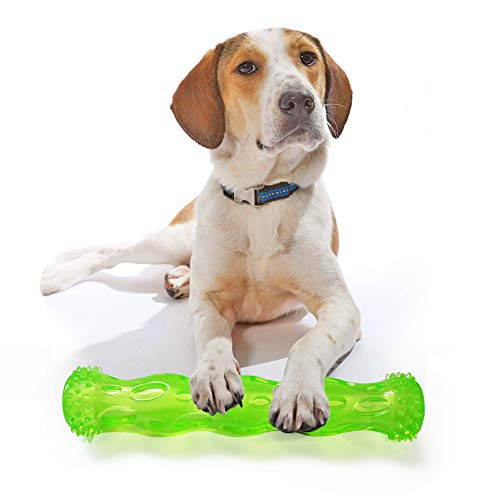 IREENUO TPR Squeak Chew Toy Aggressive Chewers Durable Rubber Tooth Cleaning Toy Dogs Bite Resistant Floating & Suitable Pool Use Dog chew Toy Indestructible Puppy (M, Green)
