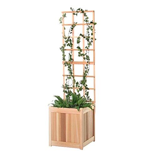 All Things Cedar 2 Piece Planter Trellis, 20