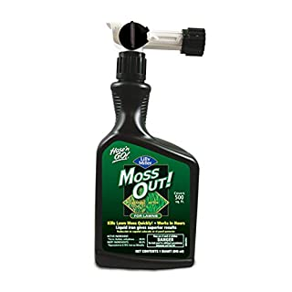 Lilly Miller Moss Out for Lawns Ready to Spray 32oz, 1-(Pack)