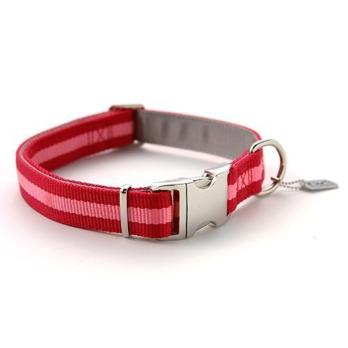 RLC Dog Collar with Metal Buckle, 1-Inch, Large, Stripe Pink