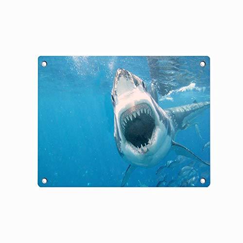 Fashion Tin Sign Metal Vintage Wall Decor Art Plaque Souvenir Home Bar Cafe Bar 12 X 8 Inches [Shark Attack]