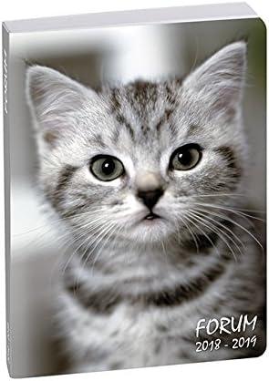 Exacompta 187788e Forum animales agenda (Broché agosto 2018 A ...