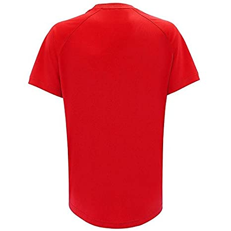 f02efec485a Wales Football Shirt Official Merchandise Shirts Gift Boxed.: Amazon.co.uk:  Clothing
