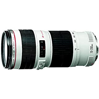 Canon EF 70-200mm f/4 L IS USM Lens for Canon Digital SLR Cameras (B000I1X3W8) | Amazon Products