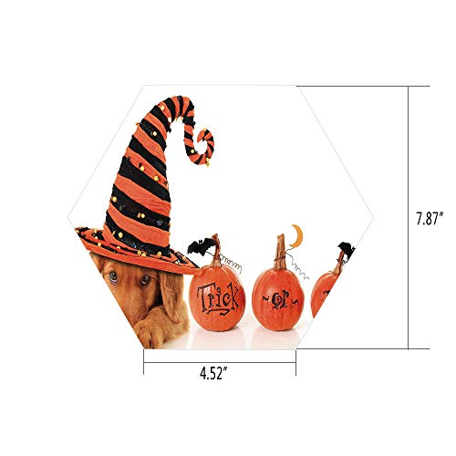 Hexagon Wall Sticker,Mural Decal,Halloween,Cute Puppy Wearing a Witch Hat Trick or Treat Little Bats Festive Funny,Orange Black Brown,for Home Decor 4.52x7.87 10 Pcs/Set ()