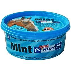 Horslyx Mini Mint - 650g