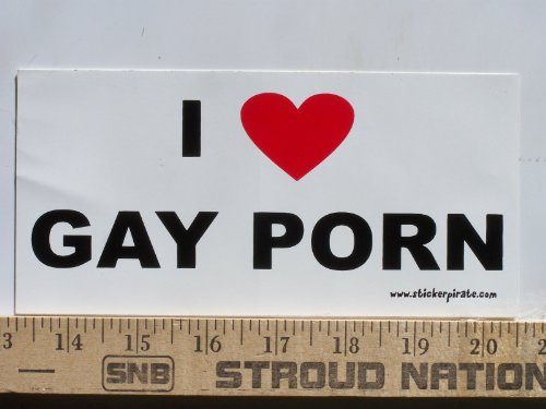 Magnet I Love Gay Porn Magnetic Bumper Sticker Prank
