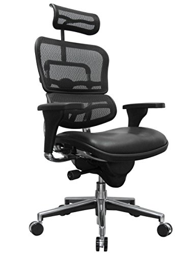 Eurotech Seating Ergohuman LEM4ERG(N) High Leather Seat/Mesh Back Swivel Chair, Black