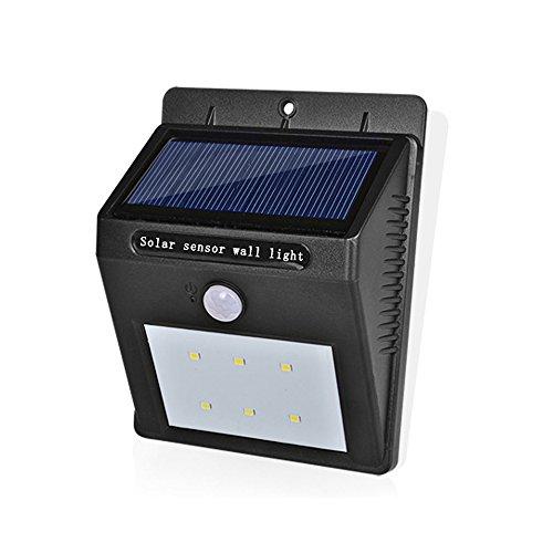 Pro Garden Solar Lamp in Florida - 3