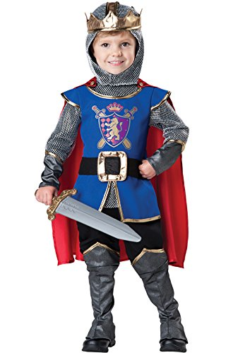 Fun World InCharacter Baby Boy's Knight Costume, Blue/Grey, 3T