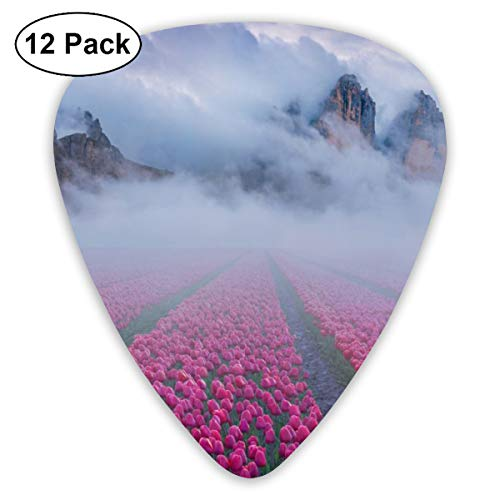 V5DGFJH.B Clouds Mountain with Tulip Fields Classic Guitar Pick Player's Pack for Electric Guitar,Acoustic Guitar,Mandolin,Guitar Bass