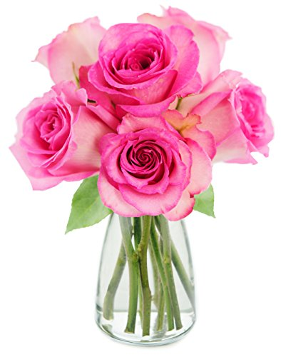 KaBloom Sweet Pink Bouquet of 6 Fresh Cut Pink Roses (Long Stemmed) with Vase