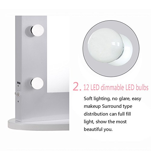 Chende Vanity Mirror with Light Hollywood Makeup Mirror Wall Mounted Lighted Mirror + Free LED Bulbs (8065)