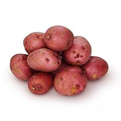 Organic Baby Red Potatoes, 24 oz