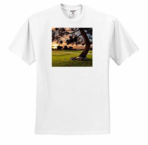 ダニタデリモントラホーヤカリフォルニアラホーヤサンセットゴルフコースTシャツ
