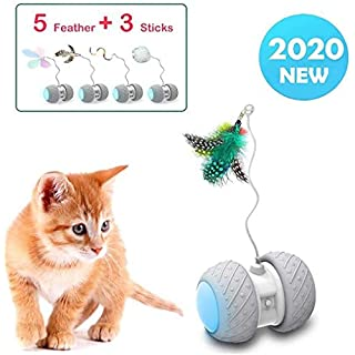 YVE LIFE Robotic Interactive Cat Feather Toys for Indoor Cats,Automatic Moving Cat Toys with Large Capacity Battery,Cat Mice/Ball/Wand Toys for Kitten/Cats (Robotic Stick Toy)