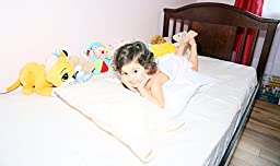 ECO FRIENDLY Toddler Pillow 13x18 - Delicate Raw Unbleached Untreated Cotton Shell with Pillowcase - Bedtime Story Printed Colour Book - Soft & Hypoallergenic - Made in USA