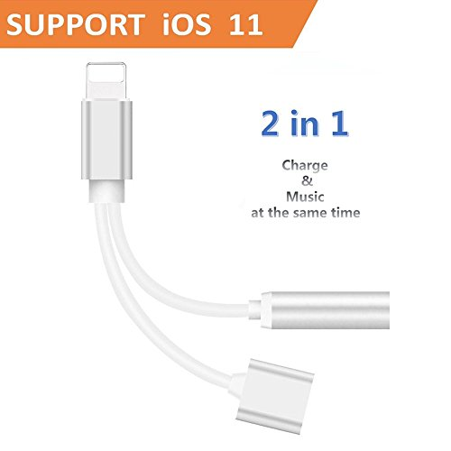 2 in 1 Lightning Adapter and Charger, iphone 7/7 plus/8/X ad