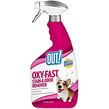 Amazon Com Out Oxygen Activated Pet Stain Amp Odor