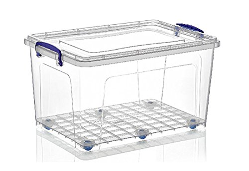 Superio Storage Container, 44 Qt, Clear with Blue Handles (Plastic Storage Containers With Wheels And Handle)