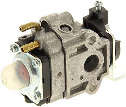 Mac Allister 1188036520 - Carburador desbrozadora: Amazon.es: Jardín