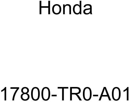 Genuine Honda 72410-T2A-A01 Door Molding