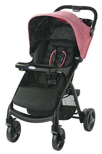 Graco Verb Click Connect Stroller, Tansy (Best Rated Child Car Seats 2019)