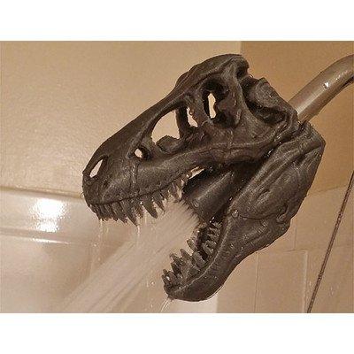 ShowerSaurus Rex TR1BLK Shower Head, Black