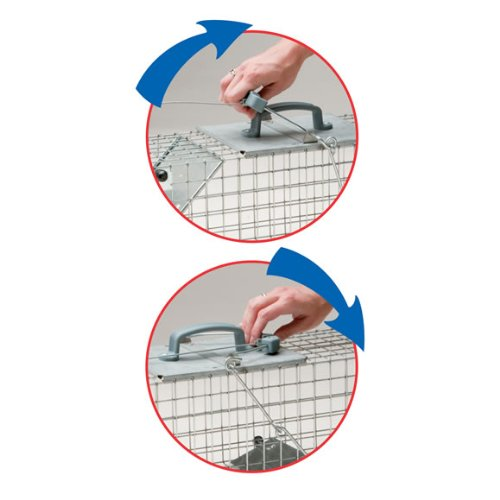 Havahart 1084 Easy Set One-Door Cage Trap for Rabbits, Skunks, Minks and Large Squirrels by Havahart (Image #3)