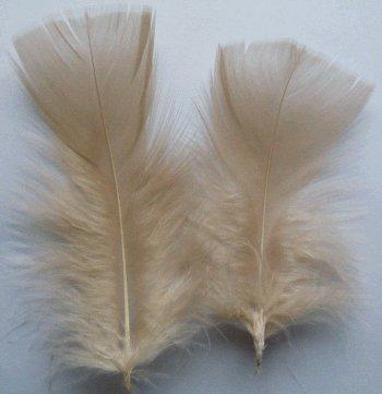 - Beige Turkey Plumage Craft Feathers - Mini Pkg