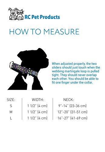 Picture of RC Pet Products 1-1/2-Inch All Webbing Martingale Dog Collar, Medium, Calypso