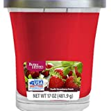 Better Homes and Gardens 17 oz Sun-Lit Strawberry Patch Candle