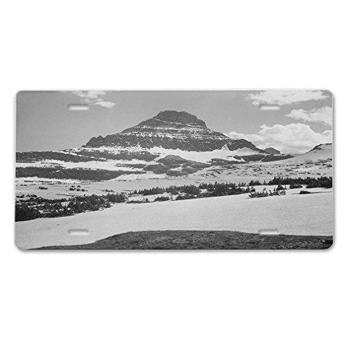 Yves Horace Glacier National Park Logans Pass (Adams) Car Aluminum License Plate ()