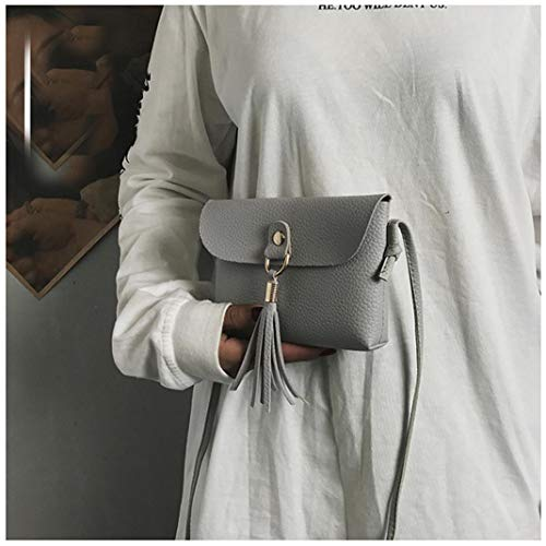 Small Woman's Fashion Vintage GREY Mini Bafaretk Handbag Bags with Messenger Shoulder Bag Tassel p1TWxn