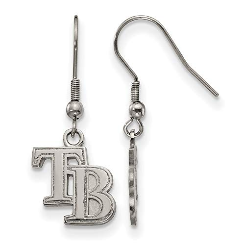 (MLB Tampa Bay Rays Stainless Steel Tampa Bay Rays Dangle Earrings Size One Size)