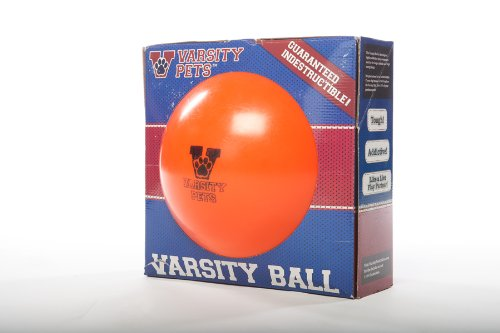 Varsity Ball — The 110% Guaranteed Indestructible Herding Ball Designed For Human-Free Canine Exercise (Basketball Design), My Pet Supplies